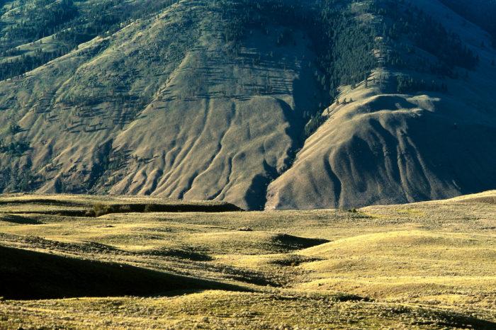 South Okanagan Grasslands Provincial Park in Canada's Great Basin BCR. © A.M. Bezener