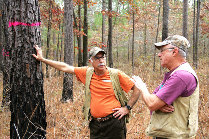 Dr. Salem Salem and Alex Voldog discuss timber management. Sam Duvall, Alabama Forestry Association Communications Director