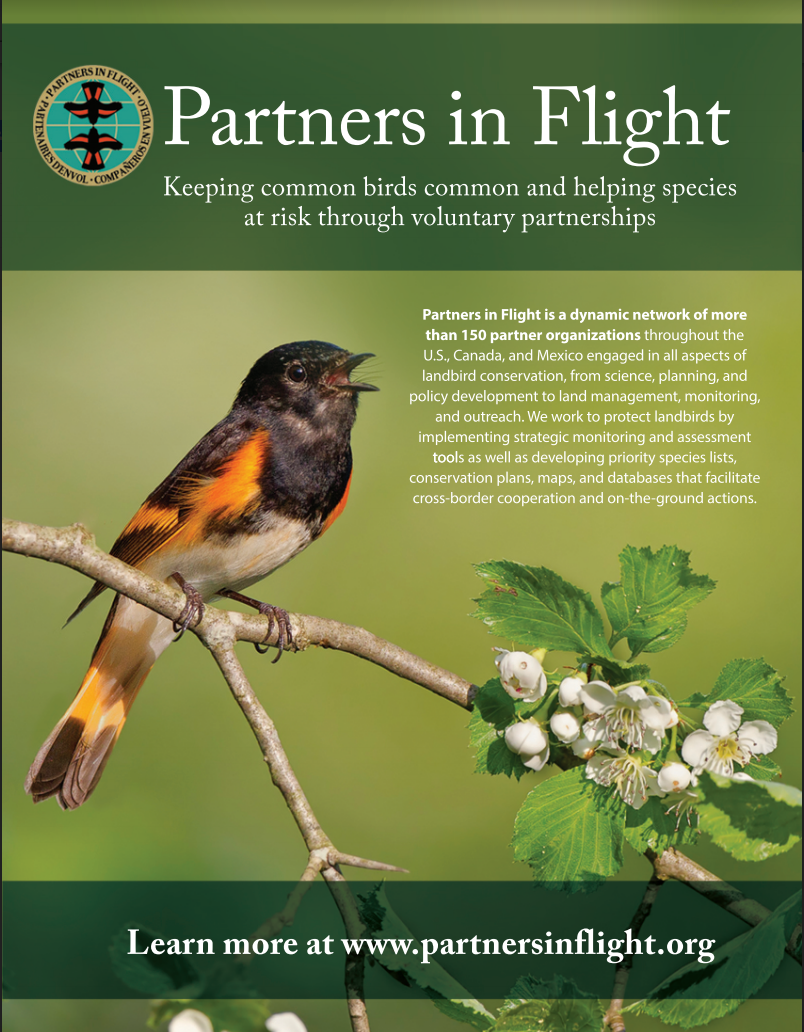 climate impacts on landbirds partners in flight