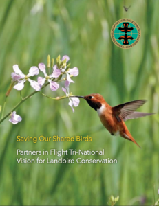 » Download Saving Our Shared Birds, Partners in Flight's Tri-National Vision for Landbird Conservation