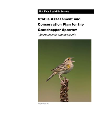 Cover of the Grasshopper Sparrow Focal Species Plan (2015)