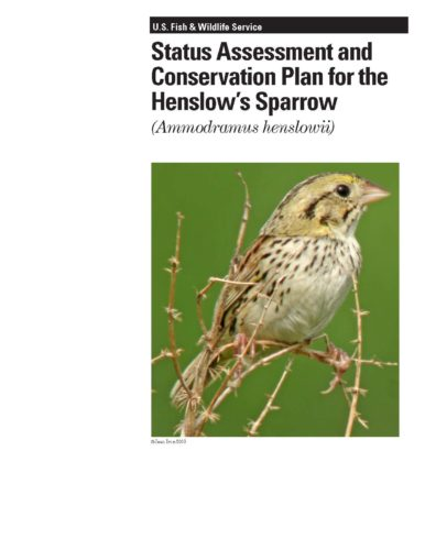 Cover of Henslows Sparrow Focal Species Plan (2012)